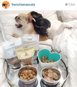 Breakfast in Bed with Breakfast Dog Treats